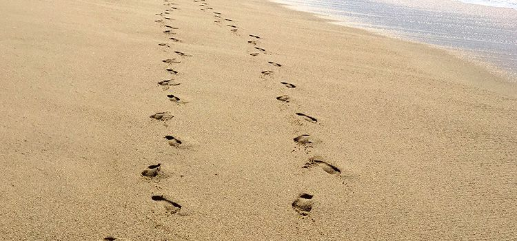 Come seguire Gesù
